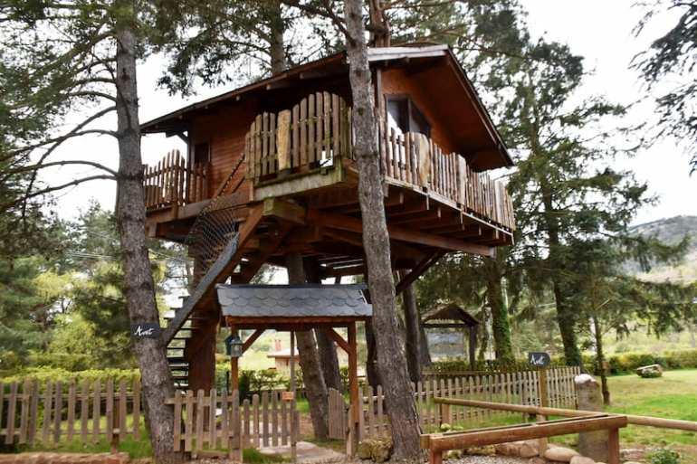 Casa en el árbol original