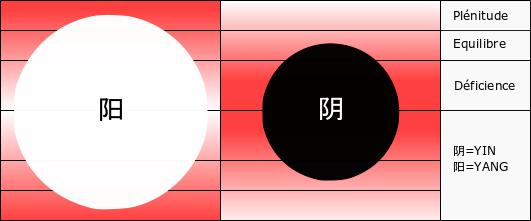 Excès de yang déficience de yin