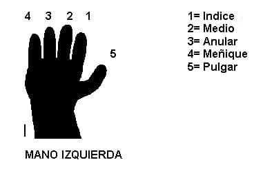 lecc2-4.jpg