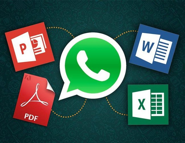 WhatsApp Office