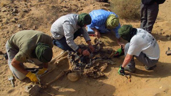 Aranzadi ha identificado a 8 saharauis desaparecidos / Sociedad de Ciencias Aranzadi-