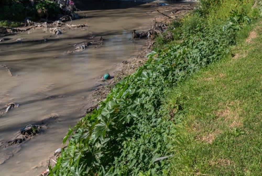 Este sábado se desarrollará una jornada de limpieza en el Arroyo Las Viejas. Será entre las 8.30 y las 16 e involucrará a diversos sectores.
