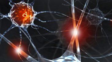 Neurônios abalados