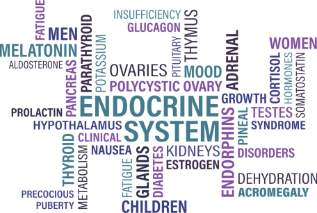 Fibromialgia Blog Entrenaconluismi - Entrenador Personal Madrid