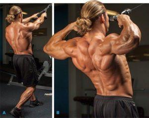 aumentar la masa muscular face