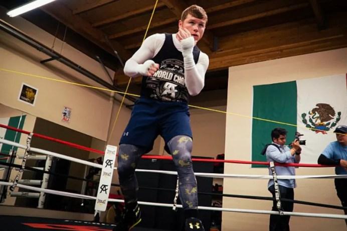 sombra de boxeo, saul canelo alvarez, entrenamiento shadow boxing, que es, consejos