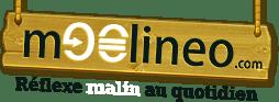 Applications rémunératrices Moolineo