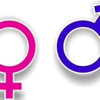 Por el derecho a una sexualidad con sentido