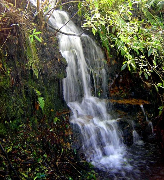 Parque Ecológico para la Sabana de Bogotá