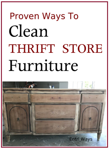 Proven Ways to Clean Thrift Store Furniture