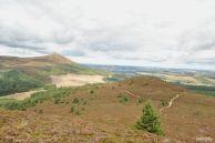 Millestone_Hill_trail_06