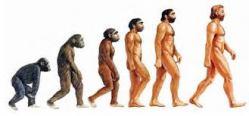 La Evolución del Hombre y el Ancestro Común