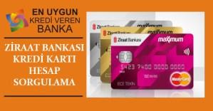 Ziraat Bankasi Kredi Karti Hesap Sorgulama