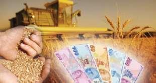 Tarım Kredi Kooperatifleri Tohumluk Kredisi