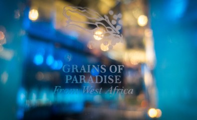 Grains of Paradise