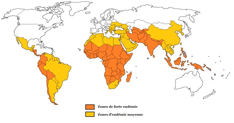typhoide-vaccin