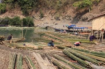 L'empilage de bambou, un sacré boulot.