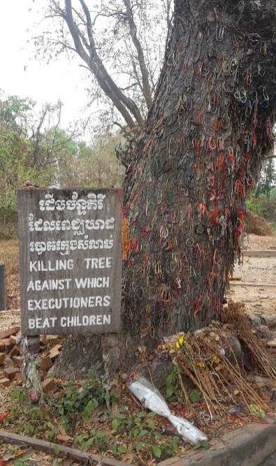 L'arbre sur lequel les enfants étaient battus devant leur mère...