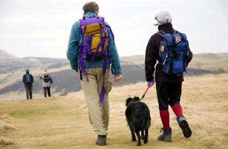 Marche avec un chien
