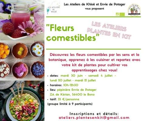 Fleurs comestibles2