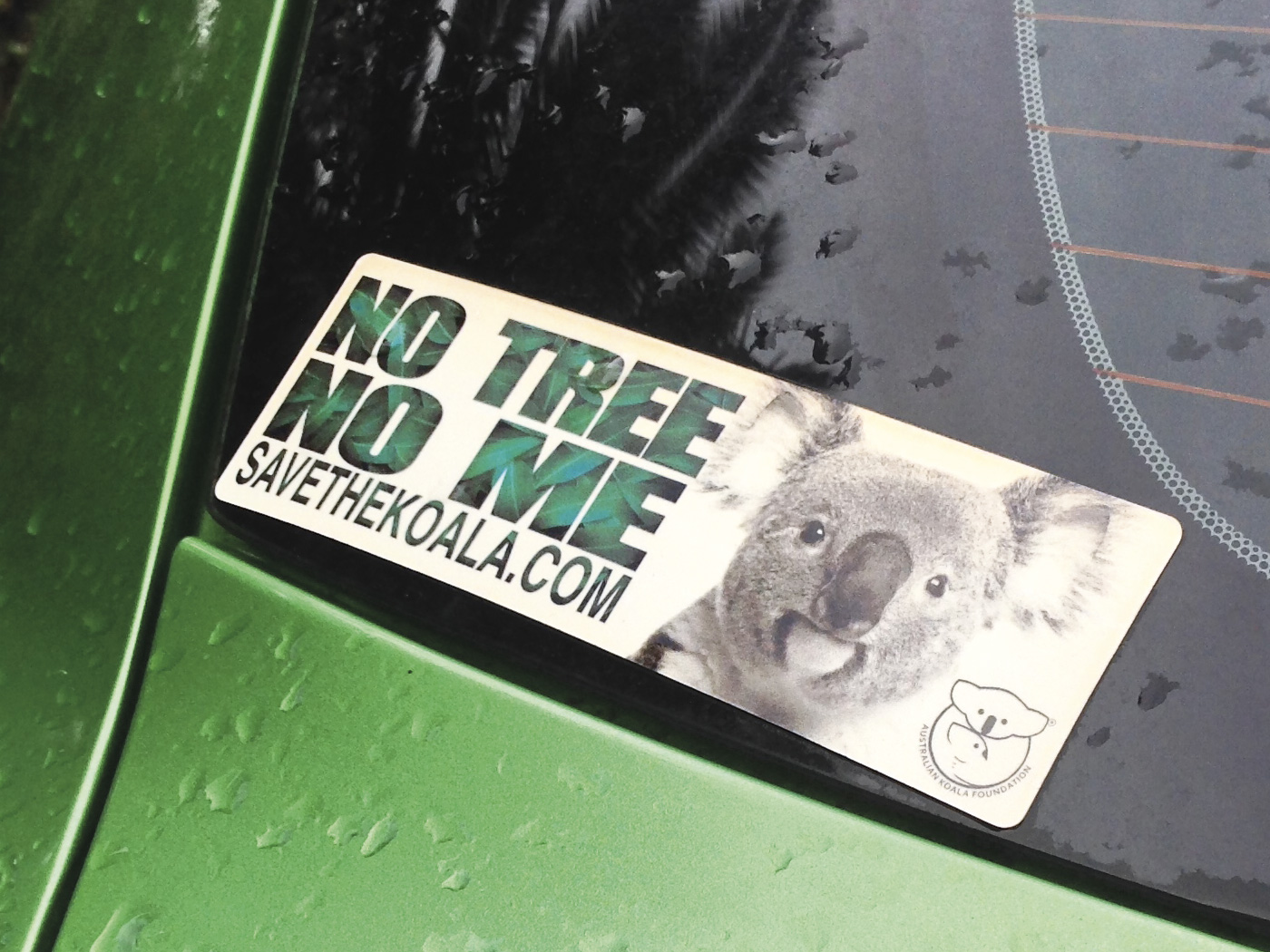 No Tree No Me Bumper Sticker