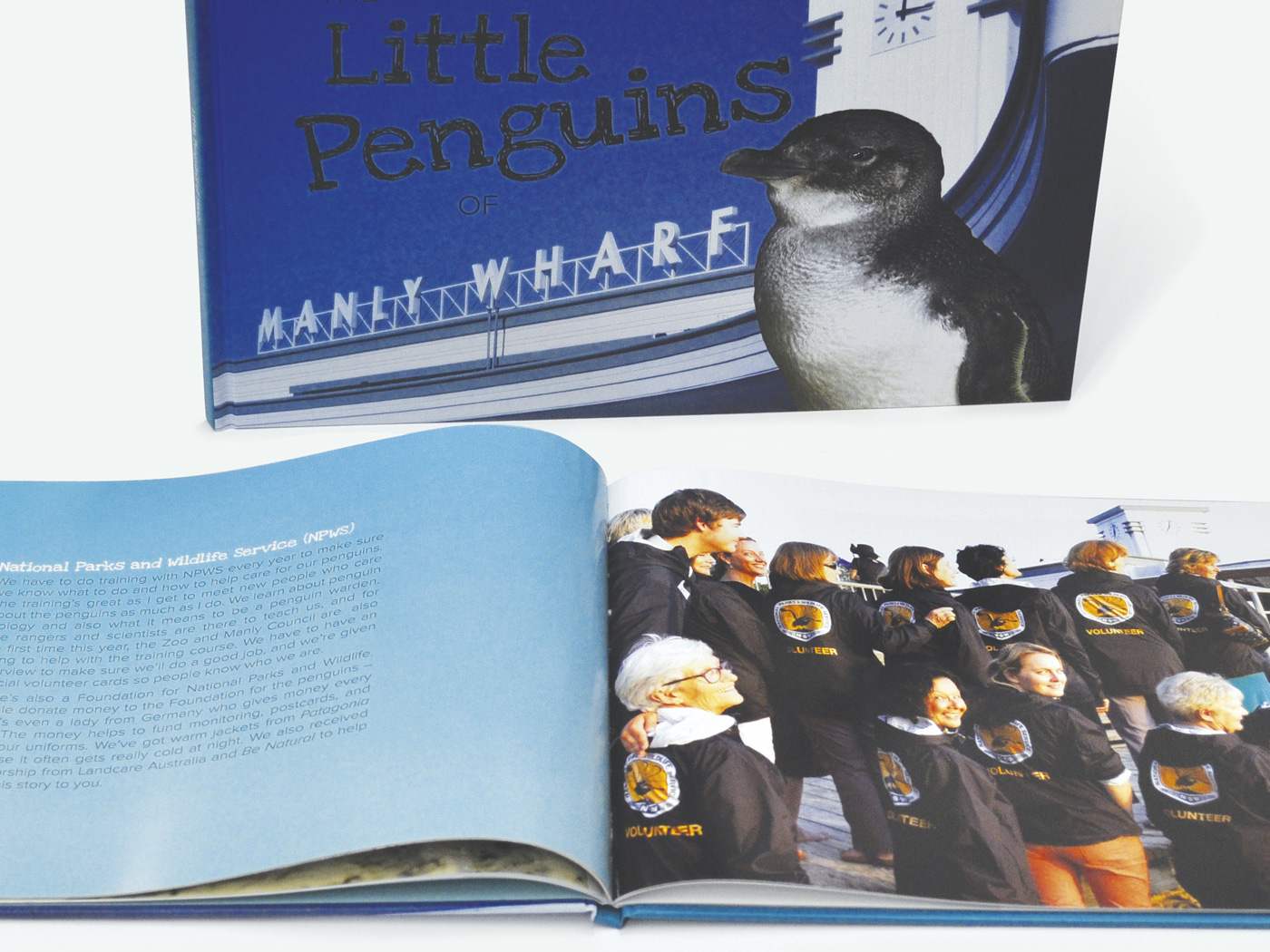 Little Penguins of Manly Book