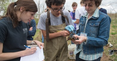 Researchers from Elizabethtown College sampling turtles