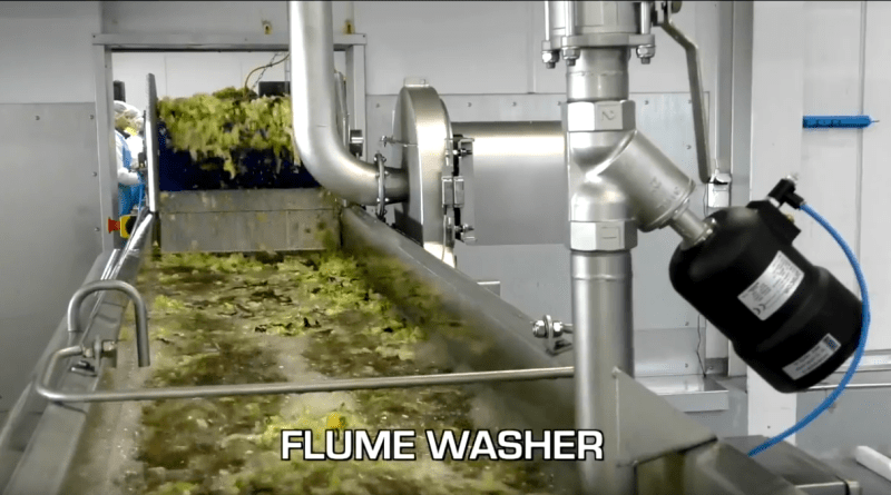 Flume washer