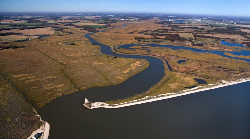 The resilience of coastal wetlands – an optimistic look to the future