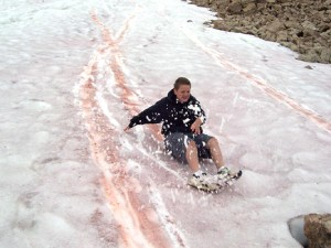 Boy sliding down a hill. The snow has streaks of pink where the boy sledded down