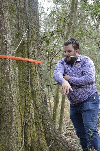 A man twisting an auger into a tree at chest height to retrieve a tree core.
