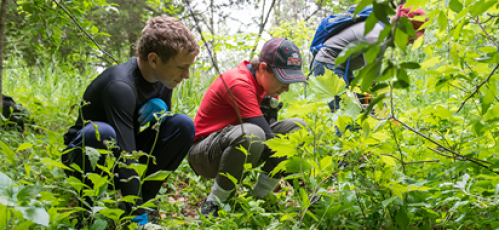 Volunteers taking care of natural resources in Michigan.