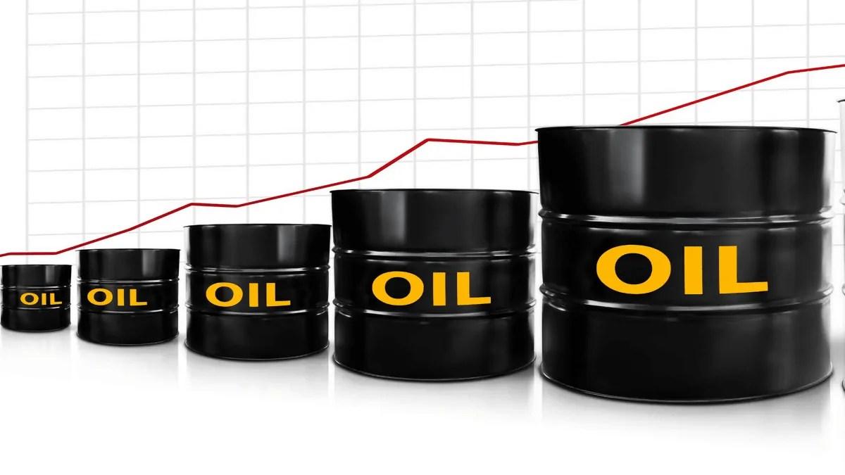ce inseamna raportarea semestriala a uleiurilor