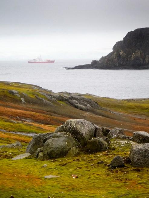 Aitcho Island, South Shetland Islands, Antarctic Peninsula