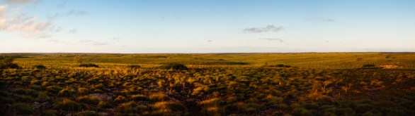 View from X81, Barrow Island