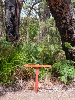 John Rate Lookout, Walpole-Nornalup National Park