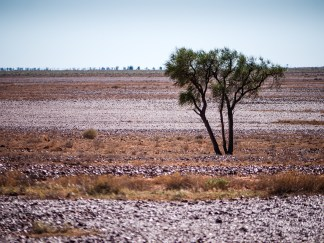 Sturt Stoney Desert, Birdsville Track, South Australia