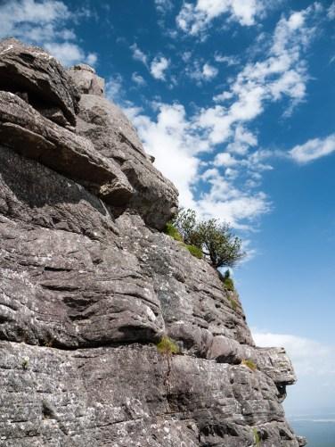 Rocky Ledges supporting Life, Mount Toolbrunup, Stirling Range National Park