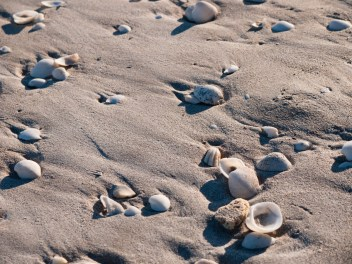 Eighty Mile Beach, Western Australia