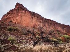 Honeycomb Gorge, Kennedy Ranges National Park, Western Australia