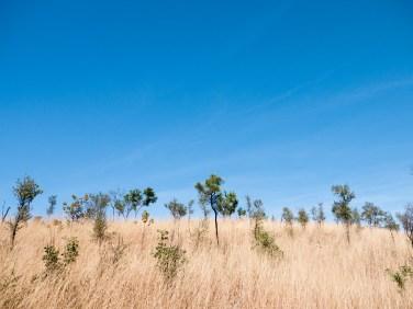 Bindoola Gorge Walk, Home Valley Station, Kimberleys, Western Australia