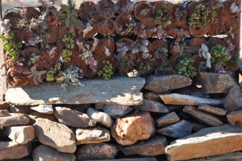 Close up of Green Wall, on dry stone wall