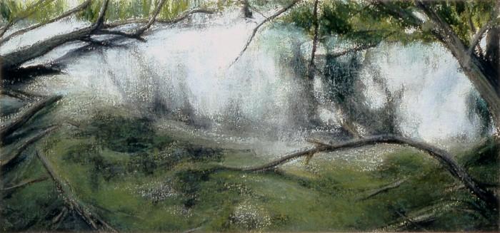 Joyce Lyon artwork swamp