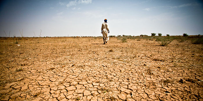 cracked, arid land from a drought