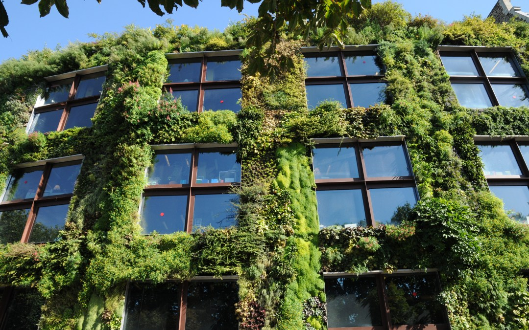 World Green Building Council Spreads the Green Love