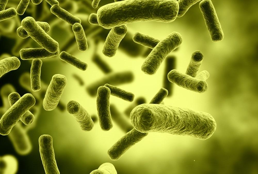 Newly Discovered Bacteria Breathes Uranium