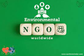 The Top 10 NGOs Working for Environmental Protection