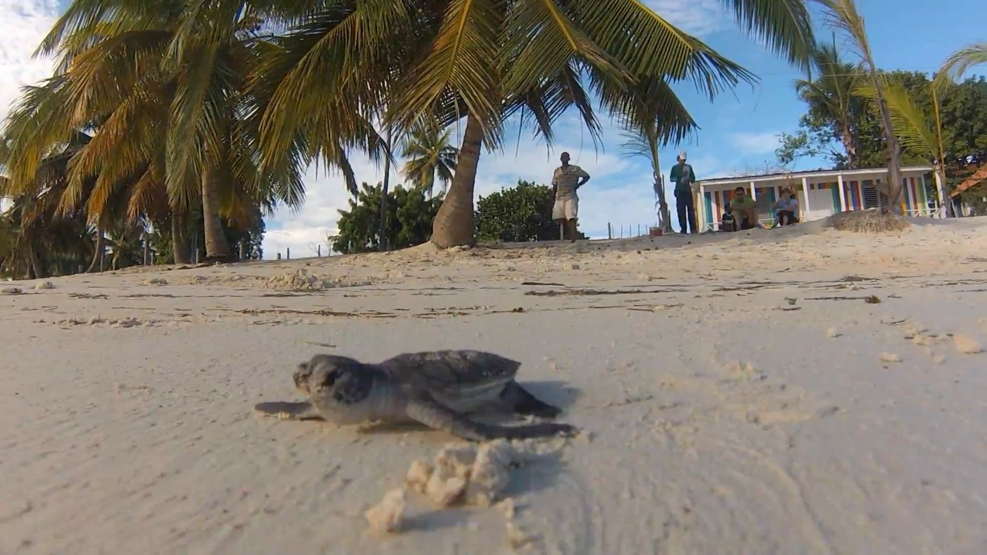 Island Solutions: Sustainable Tourism For Secure Livelihoods