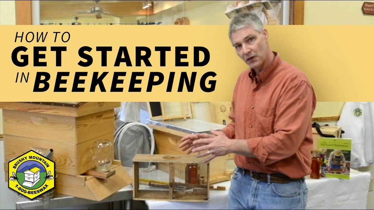Tips For Getting Started In Beekeeping – Brushy Mountain Bee Farm