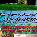 Drip Irrigation Manhattan Beach EnviroscapeLA